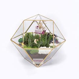 Piramit Cam Ýçinde 6 Adet Sukulent Bitkisi, Doðal Yosun ve Aksesuarlar Kullanýlarak Hazýrlanmýþ Teraryum Çalýþmasý