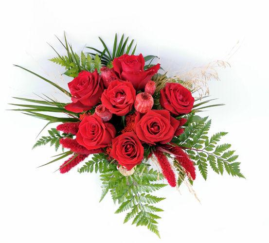 Aşk Kapında - Kırmızı Güller