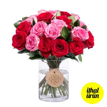 Kırmızı Pembe Güller
