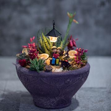 Yaşama Sevincim Minyatür Bahçe