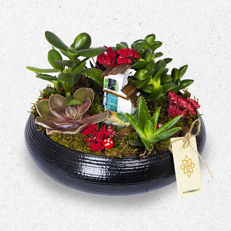 Seramikte mini bahçe tasarımı